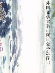 外国文学大系:阿里父子沉浮记封面